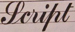 Script Calligrapghy