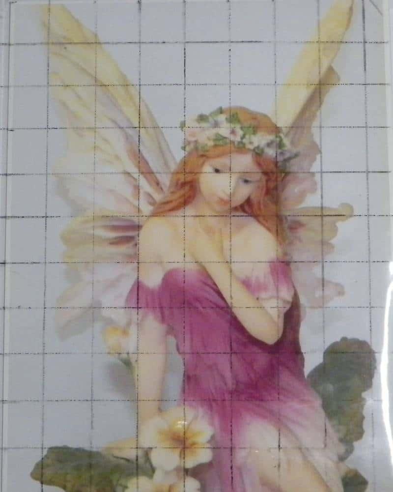Fairy photo inside sleeve with grid drawn.